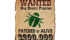 Are All Bug Bounties Created Equal?